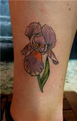 iris-susen-cicegi-dovmesi---iris-flower-tattoo