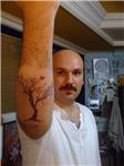 agac-dovmesi---tree-tattoos