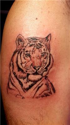 kaplan-dovmesi---tiger-tattoo